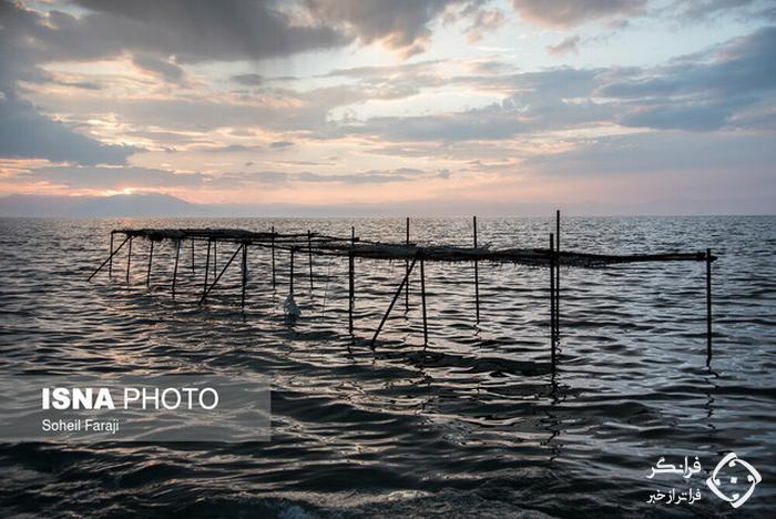 جمع آوری لوله انتقال آب دریاچه ارومیه به دریاچه مصنوعی بندرشرفخانه